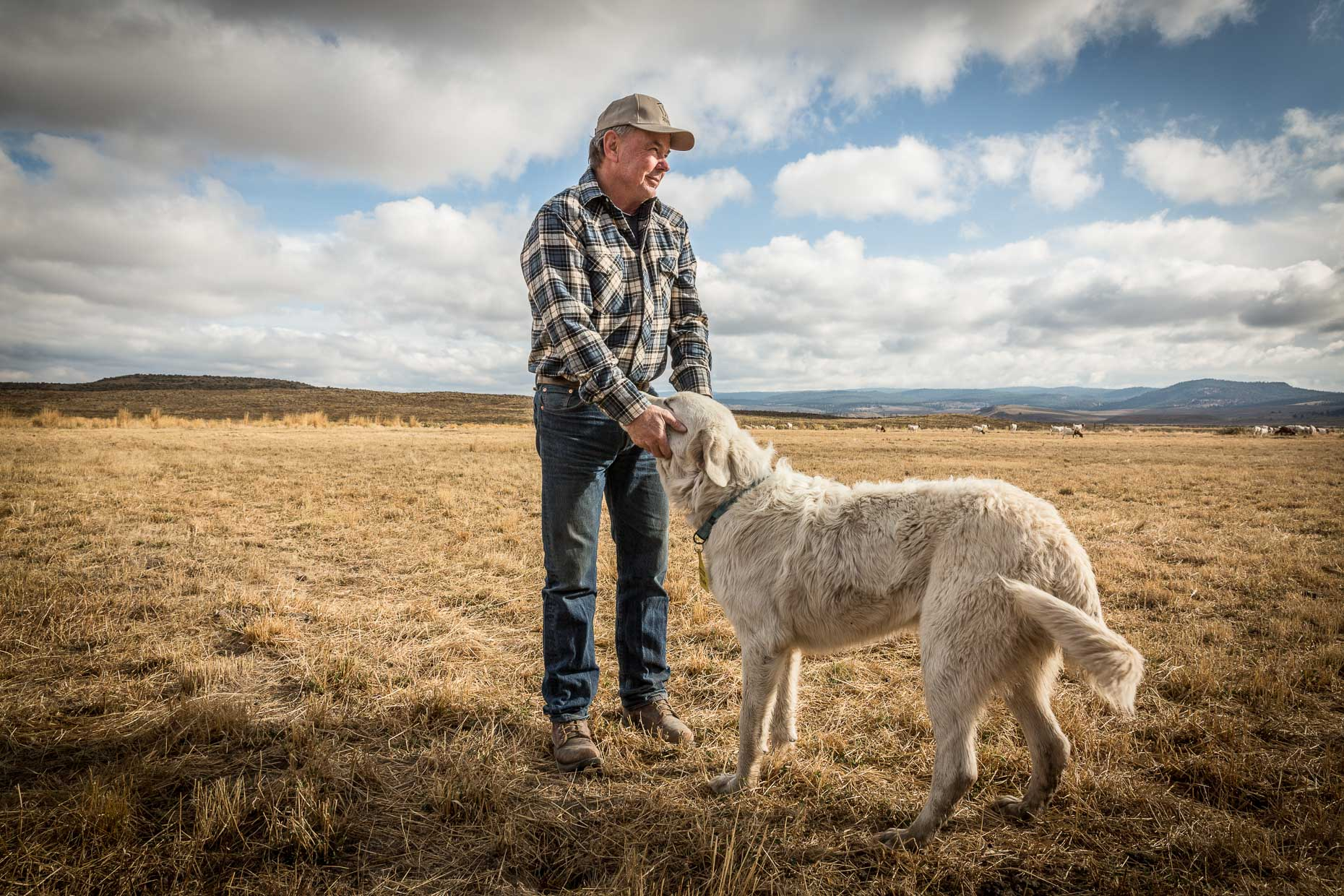 Portrait of man posing with dog (a white Great Pyrenees) standing on field at ranch. Silvies Valley Ranch, Seneca, Oregon by David Zaitz