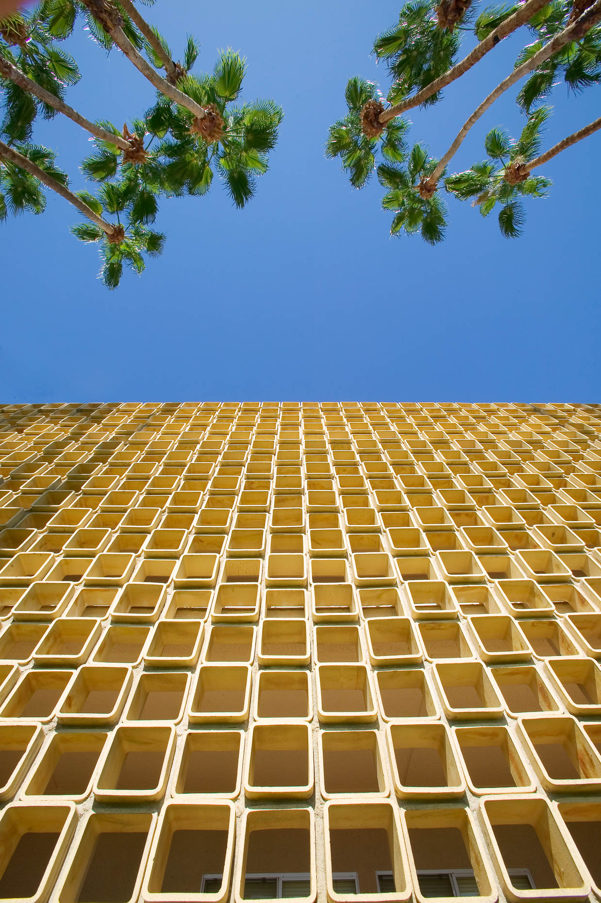 Architecture shot of building with decorative brick façade, looking up toward sky with palm trees. Palm Springs, California,  David Zaitz Photography.