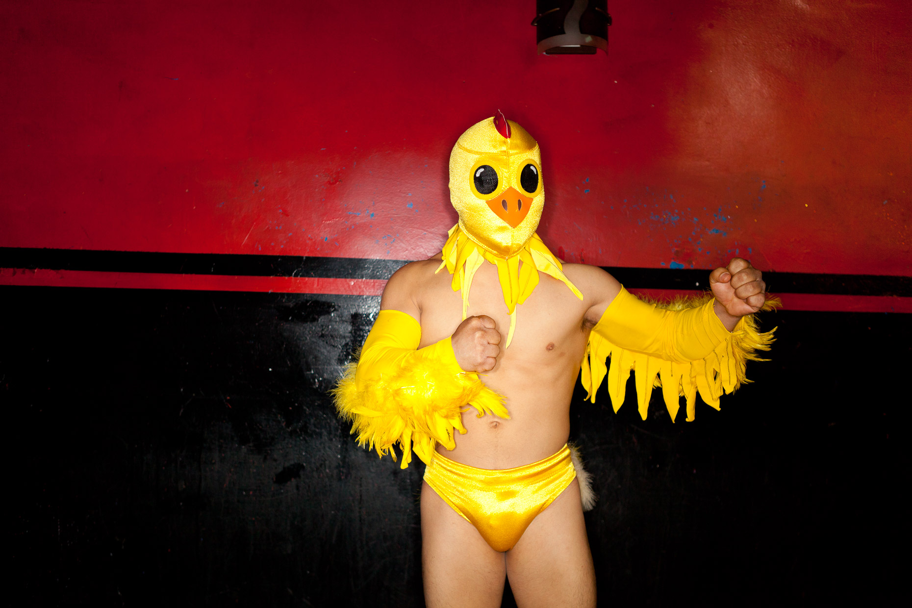 Lucha Vavoom Mexican wrestling and burlesque show in Los Angeles by David Zaitz, man in chicken costume against red wall