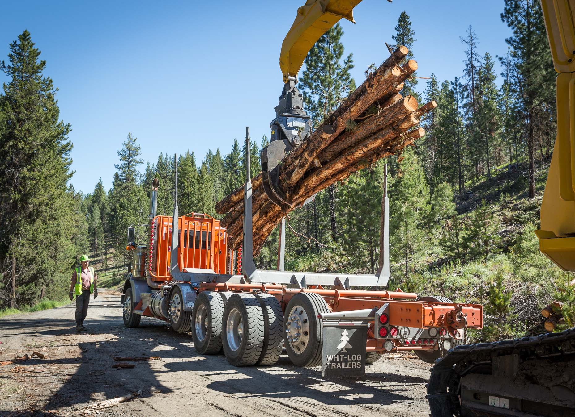 Crain with grip loads cut logs onto truck for transportation to lumber mill in Oregon, by David Zaitz