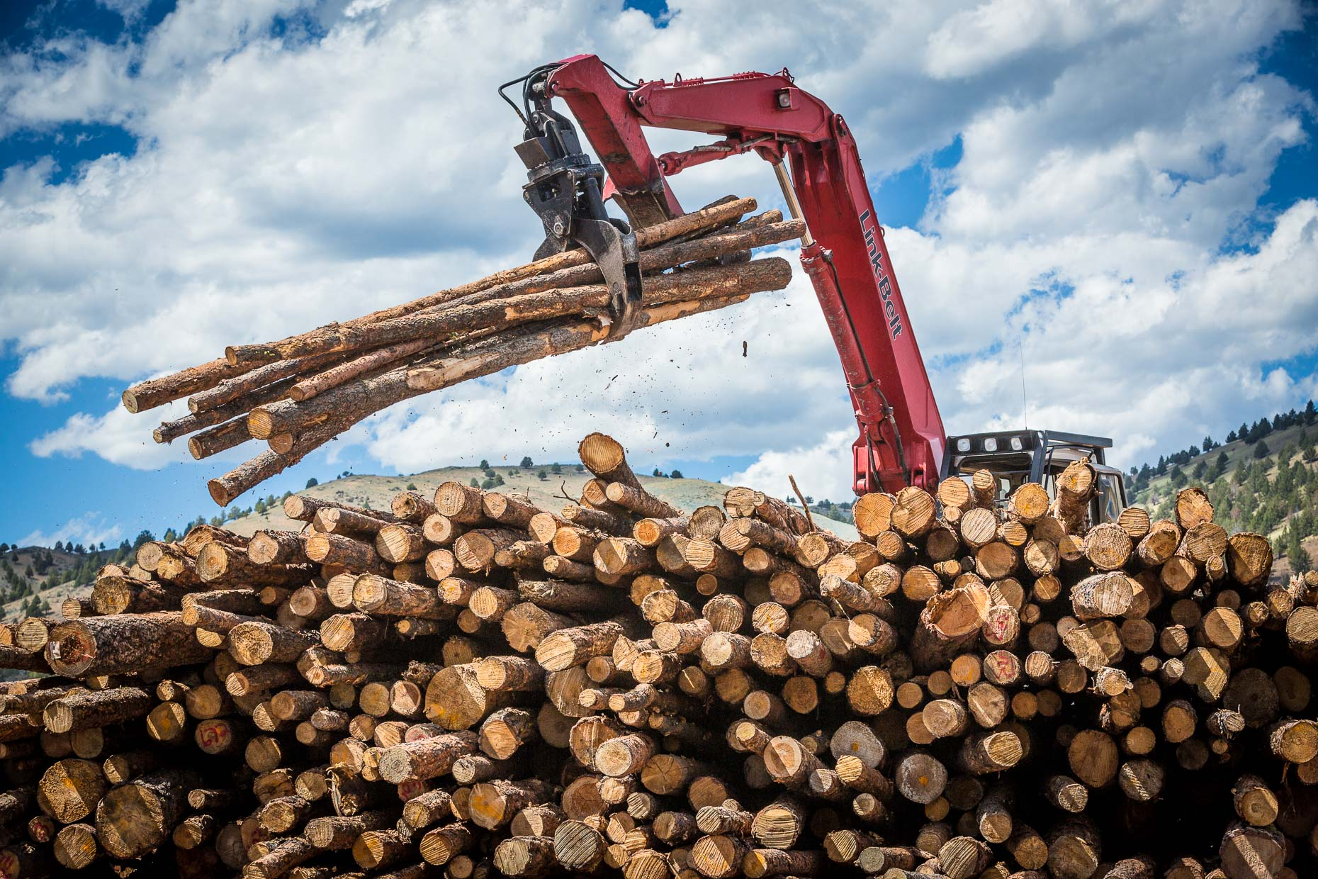 Machine with grip picks up logs from stack of logs to move into processing, Malheur Lumber Company mill in John Day, Oregon by David Zaitz.