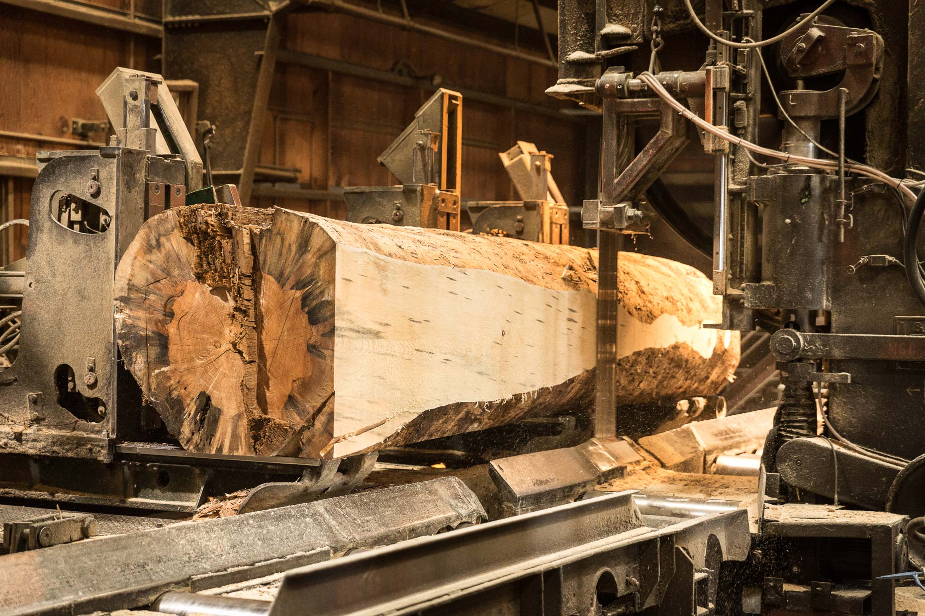 Large log being cut my automated saw in lumber mill, Malheur Lumber Company mill in John Day, Oregon by David Zaitz.